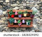 Pots Of Different Bright Colors ...
