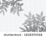 vector transparent shadow of...   Shutterstock .eps vector #1828354568