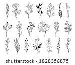 set of vector doodle hand drawn ...   Shutterstock .eps vector #1828356875