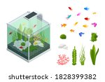 isometric goldfish in the...