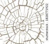 cracked wood texture  wooden... | Shutterstock .eps vector #1828771922