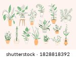 Green Plants In Pots Set...