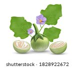 eggplant vector  leave and... | Shutterstock .eps vector #1828922672