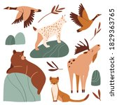 cute forest animals set. funny... | Shutterstock .eps vector #1829363765
