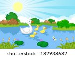 Duck Family Cartoon Swimming