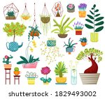 Home Plants Vector Illustration....