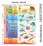 Geologic Timeline Scale Vector...