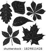 autumn leaves black white... | Shutterstock .eps vector #1829811428