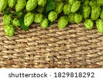Green Hops Cones On Wicker...