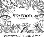 Sketch Seafood. Hand Drawn...