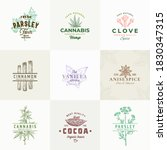 premium quality herbs and...   Shutterstock .eps vector #1830347315