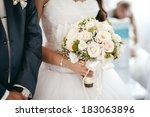 groom and bride holding wedding ... | Shutterstock . vector #183063896