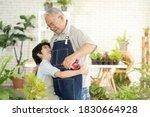 Asian Retired Elderly Activitie ...