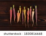 Color Carrot With Leaves At...