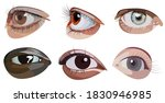 Vector Set Of Eyes In Graphic...