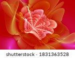 Red Fractal Flower  Meditation...