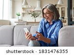 Small photo of Amazed happy mature older 60s woman, excited customer holding smartphone using mobile app feeling great positive surprise reaction receiving gift reading sms on cell phone sitting on couch at home.