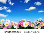 Lush Flower Bed With White And...