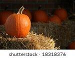 pumpkin on straw against dark...   Shutterstock . vector #18318376