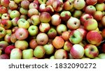 raw ripe apples food background.   Shutterstock . vector #1832090272