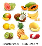 collection of exotic fruit and... | Shutterstock .eps vector #1832226475