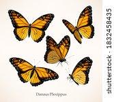 monarch butterfly vector art in ... | Shutterstock .eps vector #1832458435