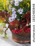 Autumn Bouquet Of Flowers With...