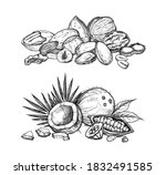 nuts mix set. isolated flat... | Shutterstock .eps vector #1832491585