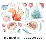 Set Of Christmas Woodland...