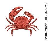illustration of crab in... | Shutterstock .eps vector #1832834698