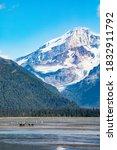 Lake Clark National Park and Preserve, Cook Inlet, Kenai Peninsula, Alaska, coast bear, mudflat, mountains
