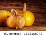 halloween jack o lantern on a... | Shutterstock . vector #1833168742