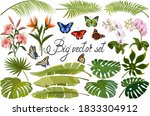 Colored Vector Set For Design...