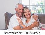 portrait of a mature man... | Shutterstock . vector #183433925