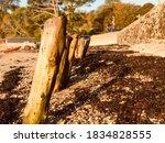 Wooden Posts On Loe Beach In...