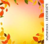 falling autumn leaves. red ... | Shutterstock .eps vector #1835381875