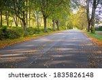 An Empty Bicycle Asphalt Road ...