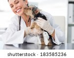 Stock photo cute puppy kissing female vet in clinic 183585236
