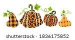 Halloween Pumpkin Bundle  ...