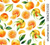 seamless watercolour citrus... | Shutterstock . vector #1836251332