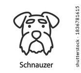 schnauzer  dog breed  linear... | Shutterstock .eps vector #1836781615
