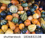 Colorful Pile Of Small Pumpkins ...