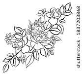 beautiful rose bouquet flowers... | Shutterstock . vector #1837203868