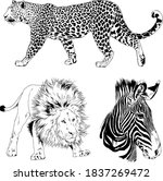 set of vector drawings animals... | Shutterstock .eps vector #1837269472