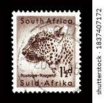 South africa   circa 1954  ...