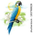 parrot | Shutterstock .eps vector #183788828