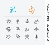 nature icons set. cherry... | Shutterstock .eps vector #1838089462