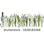 border with silhouettes of wild ... | Shutterstock .eps vector #1838182468