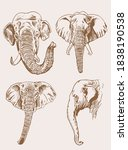 graphical vintage set of... | Shutterstock .eps vector #1838190538