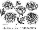 vector set of hand drawn black... | Shutterstock .eps vector #1839360385